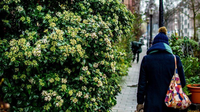 Huisvesting van cliënten met gedragsproblemen: bestemming wonen of maatschappelijk?